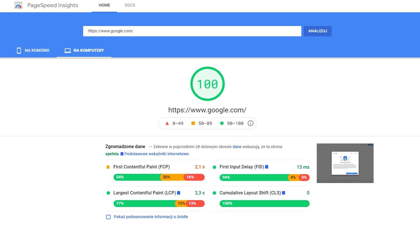Analiza programu Google PageSpeed Insights